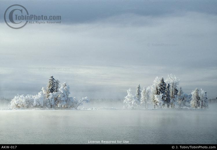Alaska Winter Hoarfrost