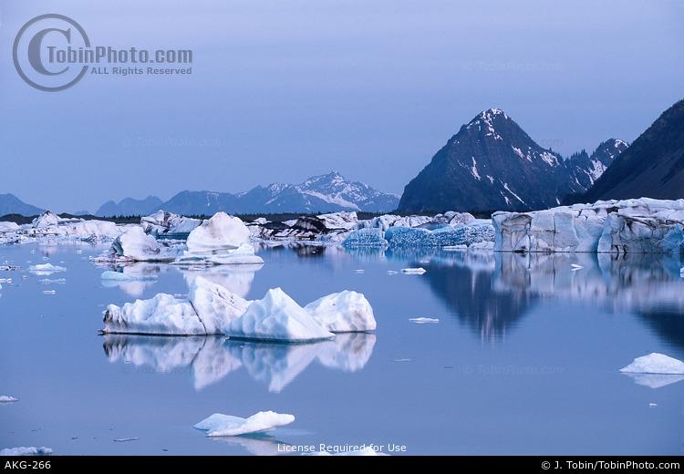 Icebergs & Blue Twilight