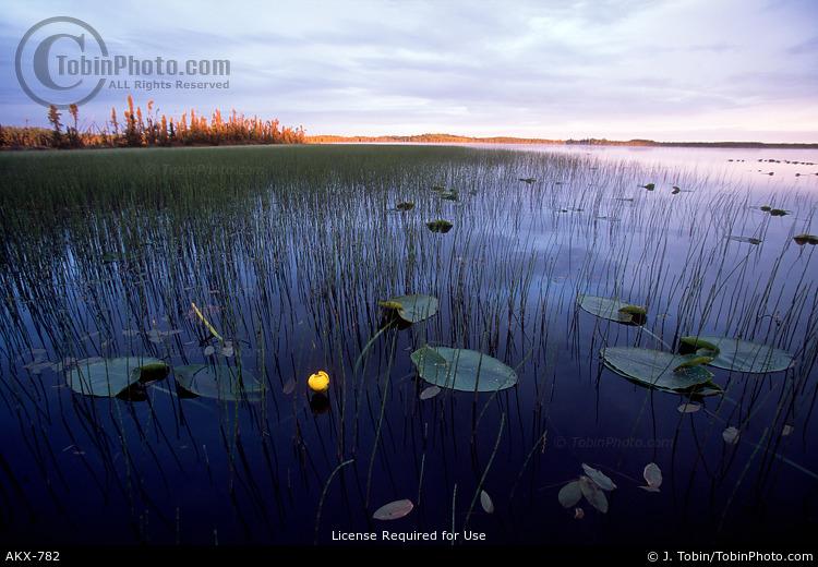 Bottenintnin Lake