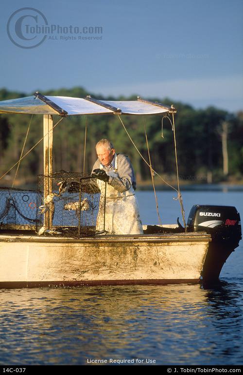 Chesapeake Bay Waterman