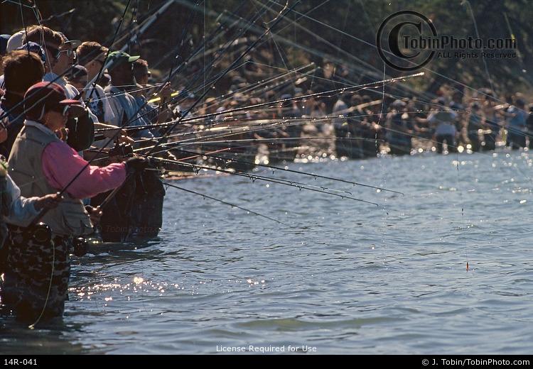 Alaska Combat Fishing