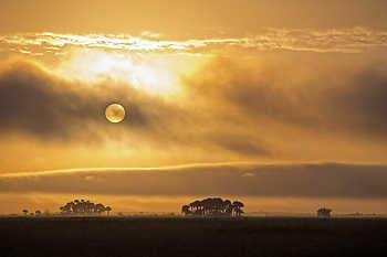 Florida Dry Prairie Sunset