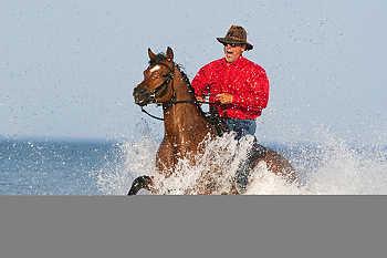 Horseback Riding in Water