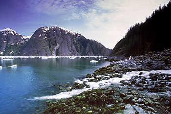 LeConte Fjord
