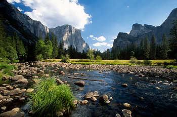 Merced R. in Yosemite Valley